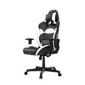 Gamdias Zelus E1 Gaming Chair - [Black/White]